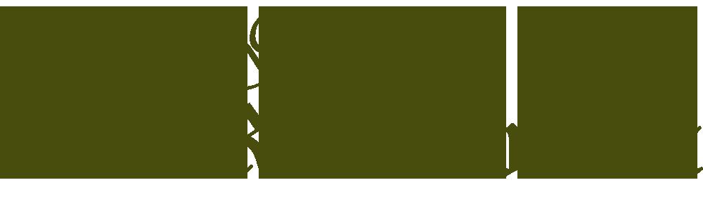 Historisches Gasthaus Zum Rockenbrunn
