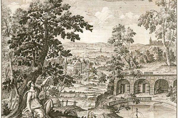 Quelle von Rockenbrunn